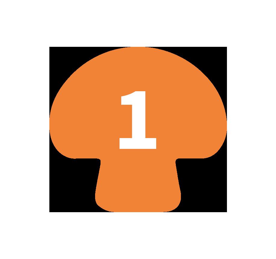 mush1-icon