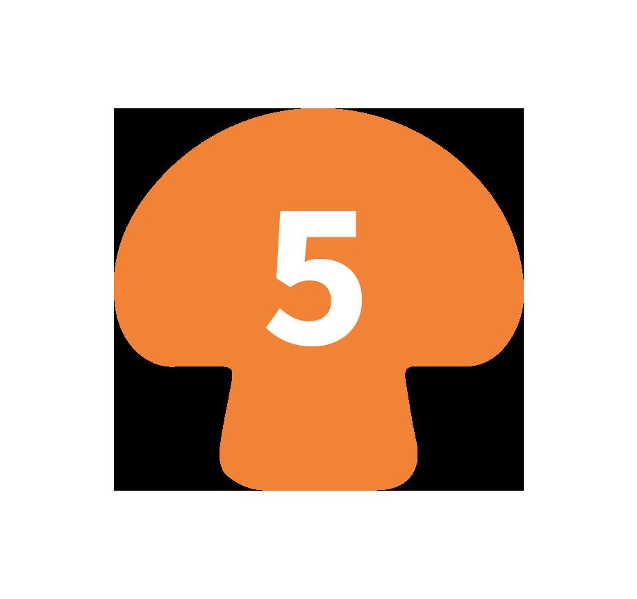mush5-icon