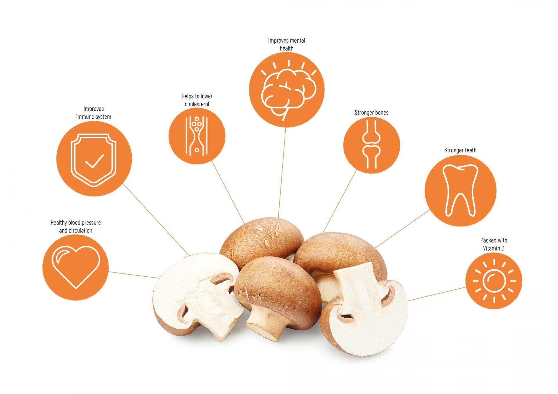 Nutrients mushrooms-2