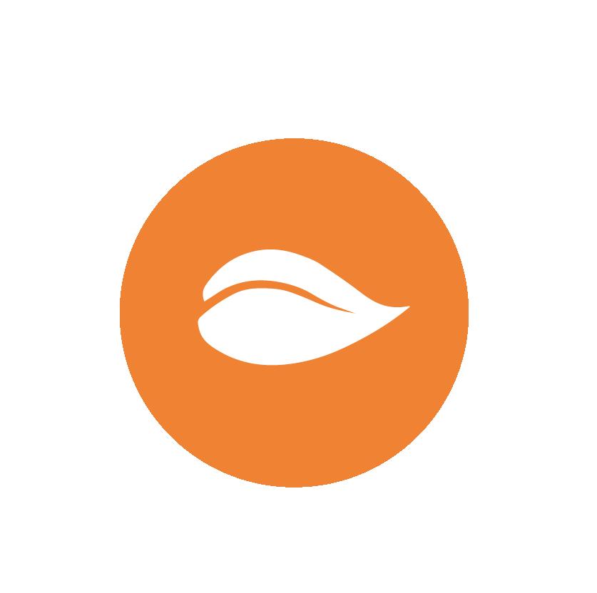 cleanlabel-orange