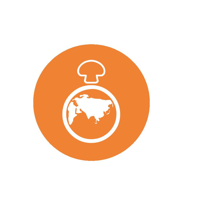 sustainable-orange